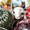 Easter sheep eggs and cards. Artistic look in vintage vivid colours.