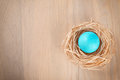 Easter single turqoise colored egg on wooden background Royalty Free Stock Photo