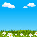 Easter Or Spring Background