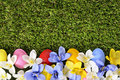 Painted easter eggs spring flower border, green grass copy space
