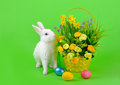 Easter sweet fluffy white bunny basket daffodils other flowers colored eggs green background Royalty Free Stock Photos
