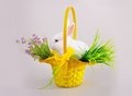 Easter sweet fluffy white bunny yellow basket flowers grey background Stock Image