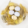 Easter table setting for a festive dinner a decorative yellow nest with colourful ester eggs on a plate Stock Image