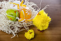 Easter time chicken and painted eggs Stock Photography