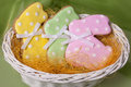 Easter traditional Gingerbread cookies Stock Photos