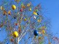 Easter tree Arkivbild