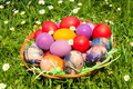 Eastern eggs in the wooden basket Royalty Free Stock Images