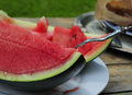 Eating fresh cuted watermelon in the garden moment of start Royalty Free Stock Photos