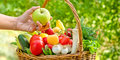 Eating healthy food healthy diet eating wicker basket is full of fruits and vegetables Royalty Free Stock Image