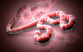 Ebola virus digital illustration of in colour background Stock Photography
