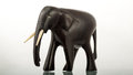 Ebony wood elephant a figure of an made out of by local african craftsmen Stock Photos