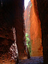 Echidna Chasm Royalty Free Stock Photos