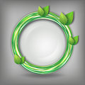 Eco abstract creative background gray with fresh green leaves and circle vector illustration Royalty Free Stock Photography