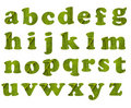 Eco Alphabet Lizenzfreie Stockfotos