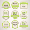 Eco and bio labels collection of vintage Royalty Free Stock Photography