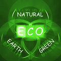 Eco on blackboard displays environmental care or eco friendly na displaying nature Stock Image