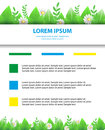 Eco brochure, flyer. Banner daisy flowers and leaf. Greeting spr Royalty Free Stock Photo