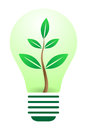 Eco bulb Royalty Free Stock Photos