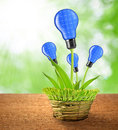 Eco energy bulbs from solar panels in pot Stock Images