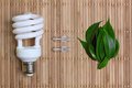 Eco energy concept with light bulb Stock Photos
