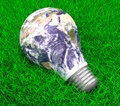 Eco energy metaphor d lightbulb with worldmap on grass Royalty Free Stock Photography
