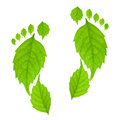 Eco footprint concept Royalty Free Stock Photo