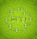 Eco friendly background with water drops on fresh green leaves t Royalty Free Stock Photo