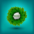 Eco friendly banner. Ecology concept with green leaves. Vector i
