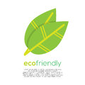 Eco friendly concept vector illustration Stock Photo