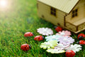 Eco friendly house concept of with ladybirds and flowers on green grass Stock Photos