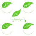 Eco friendly labels green in form of leaves Royalty Free Stock Images
