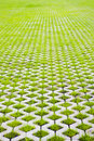 Eco friendly parking of concrete cells and turf grass Royalty Free Stock Image