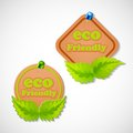 Eco Friendly Tag Royalty Free Stock Photo