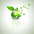 Eco green design Stock Photography
