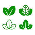 Eco Green Leaf Icon Set. Vector Royalty Free Stock Photo