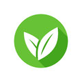 Eco icon green leaf vector illustration isolated Royalty Free Stock Photo