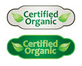 Eco label set or template Stock Images