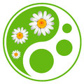 Eco labels green symbol concept using yin yang in a leaf design Stock Photo