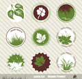 Eco labels with retro vintage design vector Stock Photos