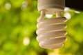Eco light bulb Royalty Free Stock Photo