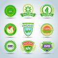 Eco logo template set. 100% organic product certified, natural product. Bio label with retro vintage design. Green Vector format. Royalty Free Stock Photo