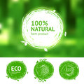 Eco set for natural products vector labels with sketch drawing design elements Stock Image