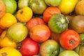 Eco tomatoes Stock Photos