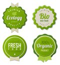 Eco Vintage Labels Bio template set Royalty Free Stock Photos