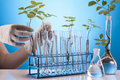Ecologic laboratory Royalty Free Stock Photo