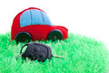 Ecological clean concept car on green grass Stock Photo