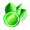 Ecological concept green label with solar panel three shiny leaves dew drops eps Royalty Free Stock Photography
