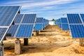Ecological energy renewable solar panel plant Royalty Free Stock Photo