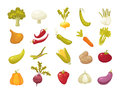 Ecological farming production classical vegetables icons set isolated on white background. vector illustration in retro Royalty Free Stock Photo