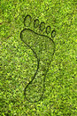 Ecological footprint Stock Photo